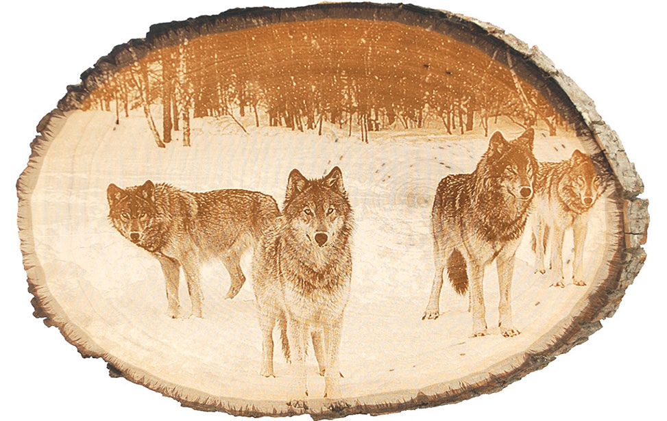 Photo Engraving of Wolf Pack on Wood Slice