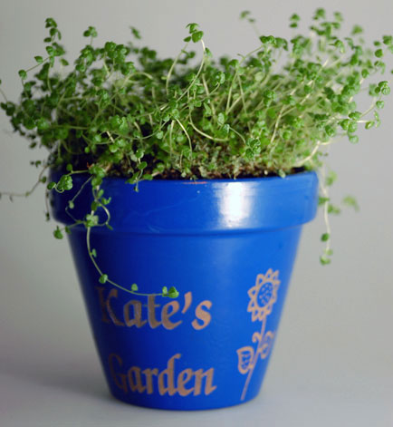 Clay engraved planter.
